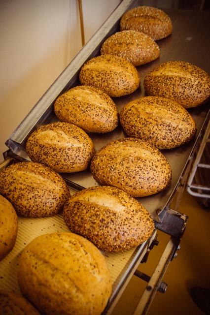BroodNodig lijnzaad